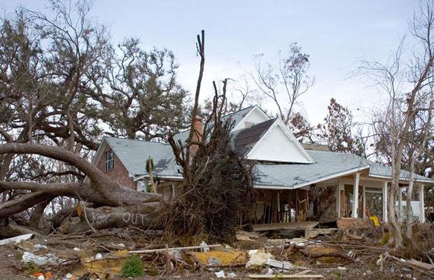 destroyed home by a falling tree after a hurricane